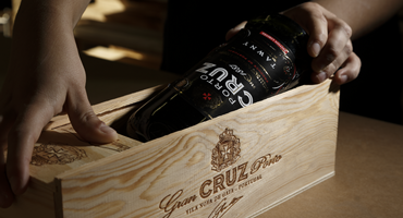 Learn all about Red Port wines